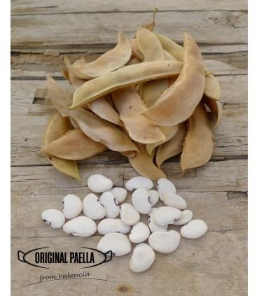 Haricot Blanc (garrofon) 300 gr pour paella